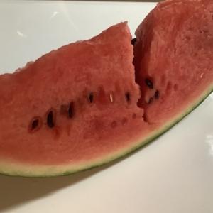フルーツを見ると…つい