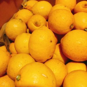 発酵酵素フルーツジュース