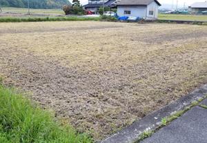 1回目の耕起を行いました。畦を刈らないと…