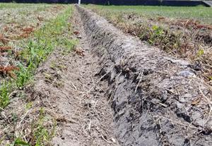 トラクターで畦塗して貰いました。田植えが楽しみ!