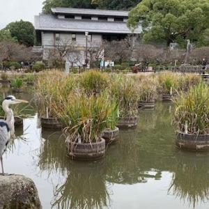 『第19回 葉月の会』が福岡県福岡市で開催されました☆
