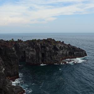 伊豆城ヶ崎海岸 溶岩が露出