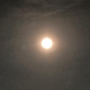 今日は満月です(超簡単、愛され満たされ満月水の作り方)