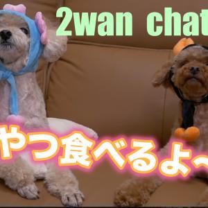 2wan chat #1