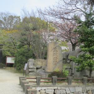岡山 烏城公園の桜(2021年、3月末)