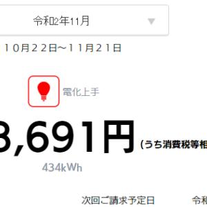 【速報】小さな平屋2020年11月分の売電・買電
