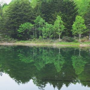 山 池一周 散歩