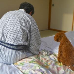犬生初 温泉宿に泊まる