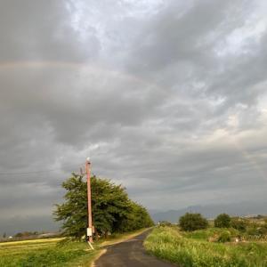 20.9.12  虹