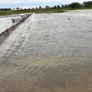 2020.10.25 鮭の遡上する川