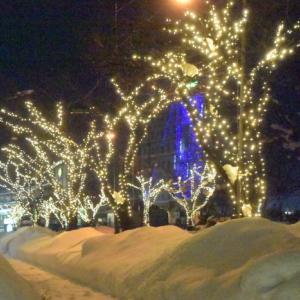 21.1.13 夜の冬景色