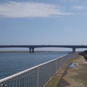 9月上旬 相模川河口