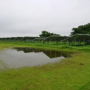 梅雨の合間に除草剤散布