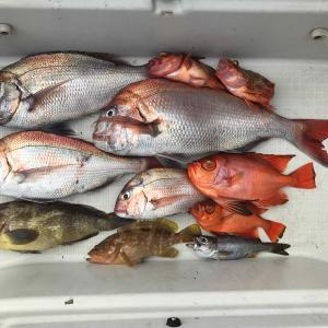 禁漁期間から解禁