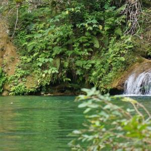 グアナヤラ公園で自然を満喫! ~ キューバ旅行&観光記 その5