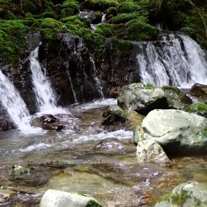 湧水の滝 ~白倉又谷~