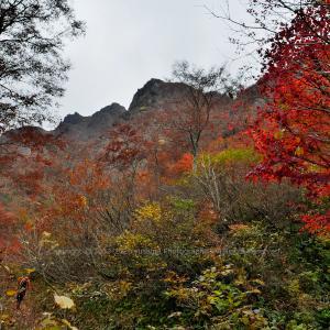 夜叉壁と紅葉 ~夜叉ヶ池~