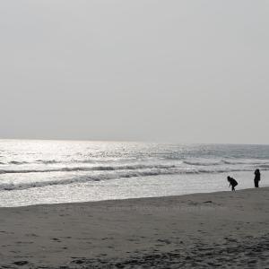 追憶・・・ ~潮見坂海岸~