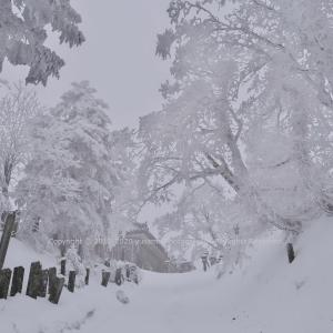 厳冬の霊山 ~山上ヶ岳(大峯山)~