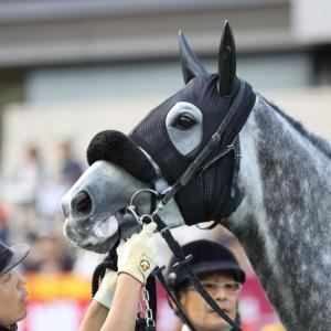 2019.10.6(日) 東京 11R 第70回  毎日王冠(GⅡ)その2