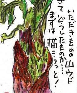 初もの~(*^^)v
