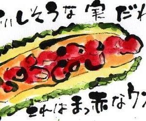 お腹は真っかっか(*^^)v