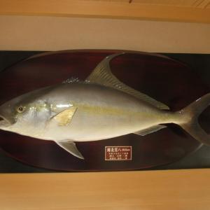 【真鯛!血鯛!鰤!鰆!太刀魚!鮃!曺以!ジギング&ラバで大募集!!】