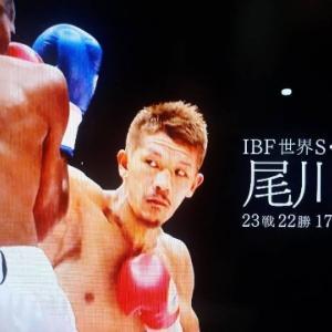 観戦記1762 IBFスーパーフェザー級王座決定戦 尾川堅一vsテビン・ファーマー