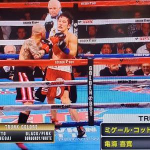 観戦記1780-1 WBOスーパーウェルター級王座決定戦 ミゲール・コットvs亀海喜寛