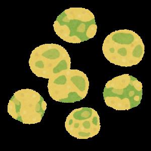 豆菓子の進化