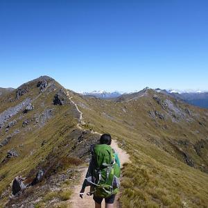 Kepler Track in Fiordland National Park Day2 〜 Luxmore Hut to Iris Burn Hut 〜