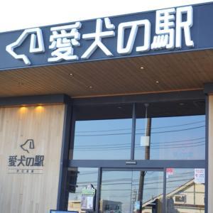 春の伊豆半島へ ☆ 愛犬の駅