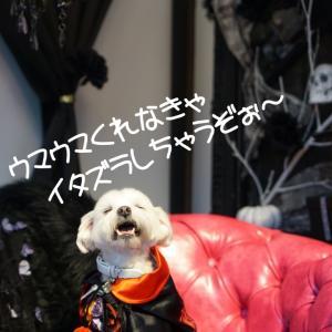 Happy Halloween ☆ koniwan