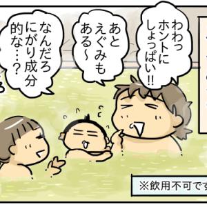 温泉で感じる太古のロマン【子連れで恵那峡旅行記③】