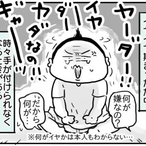 ココロオレル【次男2歳7ヶ月】