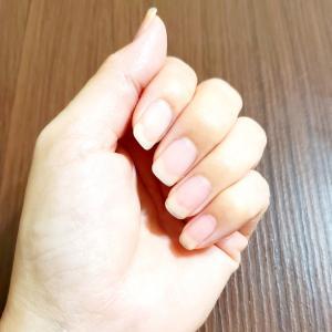 爪は、長い方がキレイだと思っていませんか?