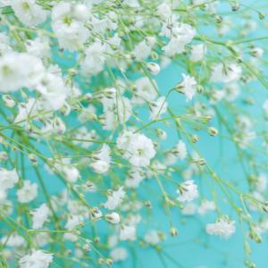 気になっていた【紫陽花ユミさんのメール鑑定】受けました♡