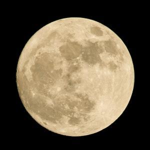 明日は、夏至+金環日食+蟹座新月
