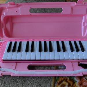 鍵盤ハーモニカ届きました