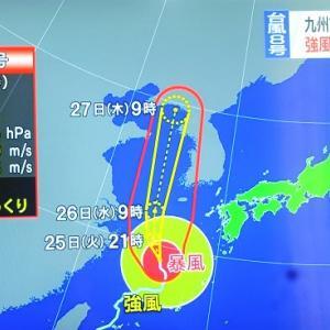 台風8号西の海上を北上