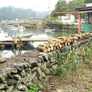 台風で折れた木を切断し浜の小屋まで