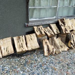 椎ノ木の割った物を天日干し