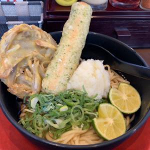 スダチ薫る清涼感溢れるヒンヤリンコで冷たいのん! I♡京都拉麺900「らーめん極 15」