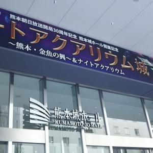 アクアリウム in Kumamoto
