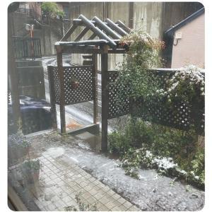 積雪&お知らせ