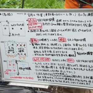 シェア畑深大寺 【秋野菜の土づくり】 講習会が開催されました。