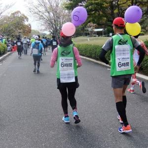 写真でつづる「第14回掛川・新茶マラソン」2