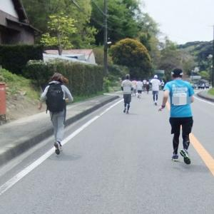 写真でつづる「第14回掛川・新茶マラソン」4