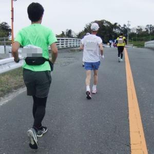 写真でつづる「第14回掛川・新茶マラソン」6