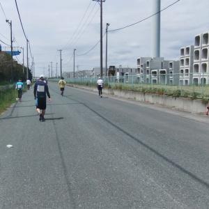 写真でつづる「第14回掛川・新茶マラソン」7